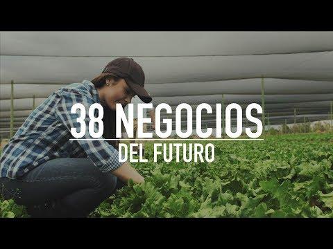 , title : 'LOS 38 NEGOCIOS MÁS RENTABLES DEL FUTURO'