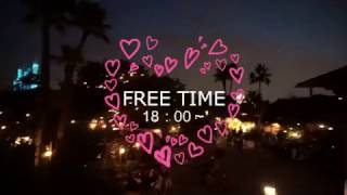 社会人サークルISTコミュニティ-ディズニー婚活&恋活イベント