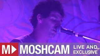 Animal Collective - Intro To Guys Eyes | Live in Sydney | Moshcam