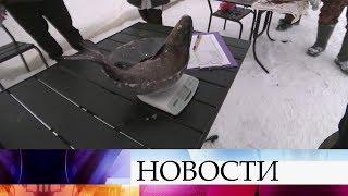 В Тверской области прошел фестиваль «Народная рыбалка».
