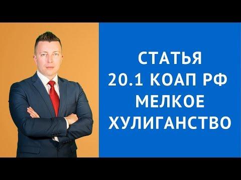 КоАП РФ Статья 20.1 Мелкое хулиганство - Административный адвокат