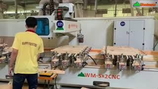 MÁY PHAY MỘNG ÂM CNC 5 Đầu 3200mm 8 Kẹp ( 10 Đầu) WOODMASTER Làm việc siêu nhanh giá tốt