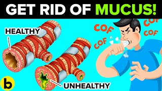 How To Get Rid Of Mucus & Phlegm In Your Chest & Throat