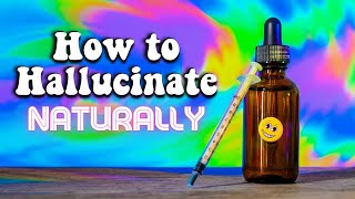 Download Video How to Hallucinate Naturally! (Closed Eye Visuals) MP3 3GP MP4