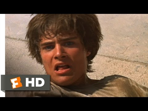 Romeo and Juliet (6/9) Movie CLIP - Romeo Kills Tybalt (1968) HD
