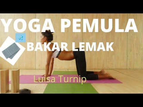 mp4 Yoga Pemula Luisa Turnip, download Yoga Pemula Luisa Turnip video klip Yoga Pemula Luisa Turnip