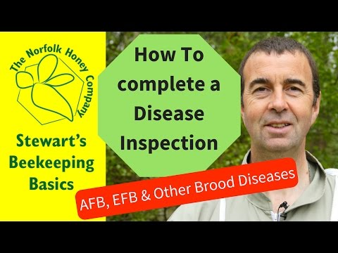 , title : 'How To Complete a Disease Inspection - AFB, EFB and Other Brood Diseases