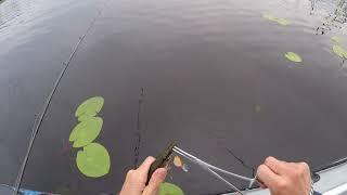 Когда начинается рыбалка на селигере