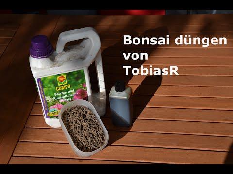 Bonsai richtig düngen [HD][DEUTSCH]