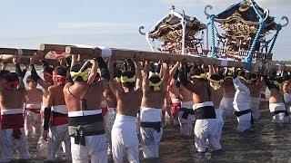 勇壮豪快、波に負けず 千葉県いすみ市で大原はだか祭り | Kholo.pk