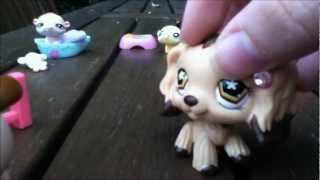 lps - what pet shall we get ?
