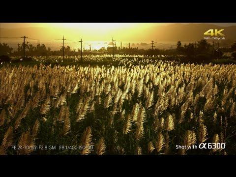 α6300 -Ultimate resolution 4K movie in Super 35mm  | α | Sony