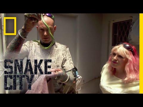 Mamba in My Closet! (Full Episode) | Snake City
