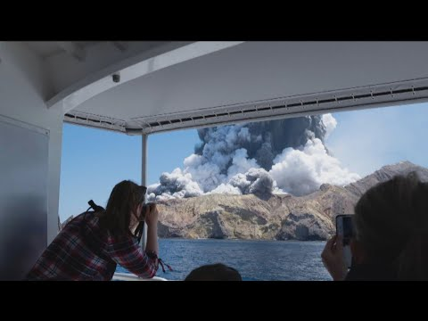 New Zealand island shows no signs of life after volcano erupts