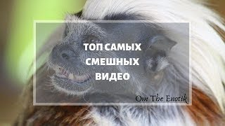 Топ САМЫХ СМЕШНЫХ ВИДЕО \ Ржака \ Угарные видео