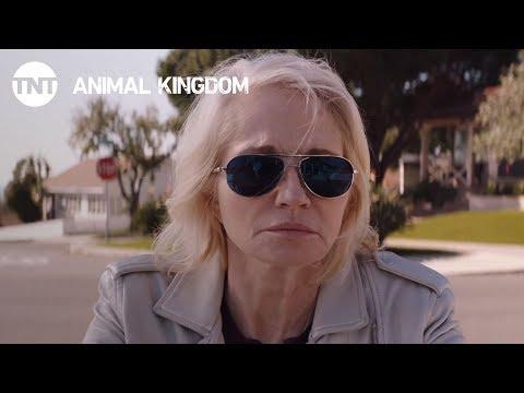 Animal Kingdom Season 2 (Promo 'Everything')