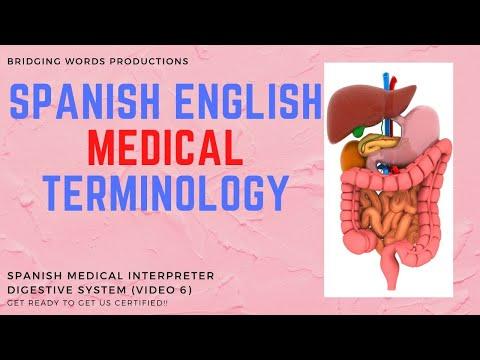 Spanish English Medical Interpreter Translator - Medical Terminology
