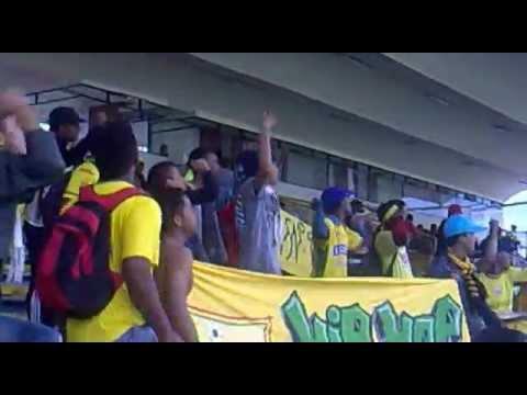 """""""Quiero que mi cajon sea amarillo y verde"""" Barra: Rebelión Auriverde Norte • Club: Real Cartagena"""