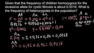 How To Find Genotype Frequencies