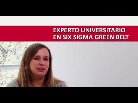 ¿Cuál es el Rol del Six Sigma Green Belt?