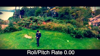 """RACING DRONE Roll/Pitch Rate = 0.00 KillerBEE """"No Fear"""" Edition"""