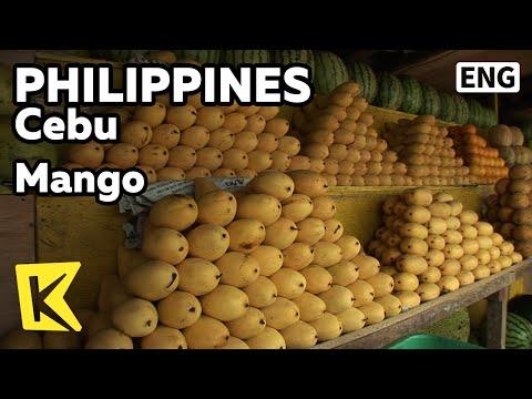 Lunas para sa halamang-singaw sa mga remedyo banyo folk
