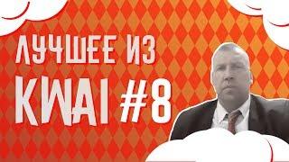 Лучшее из Kwai #8 | Депутат в Kwai