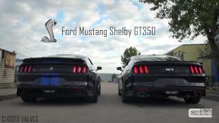 comparison-ford-mustang-gt-shelby-gt350