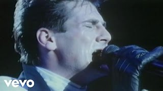 Spandau Ballet - Virgin (Live from the NEC, Birmingham)
