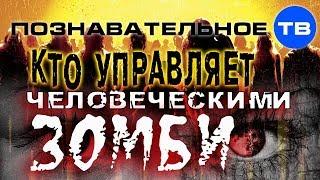 Кто управляет человеческими зомби? (Познавательное ТВ, Михаил Величко)