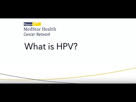 Life cycle of the hpv virus