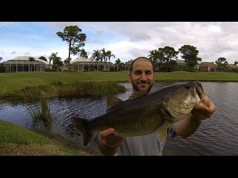 BASS FISHING (Florida Golf Course Pond) Dec. 2013/Jan. 2014