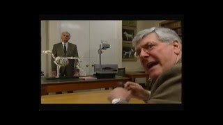 Terry Thorn and David Cavill teach Peter Purves how to judge dogs