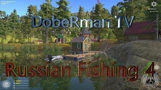 Русская Рыбалка 4 - Рыбачим на позитивчике! +Розыгрыши