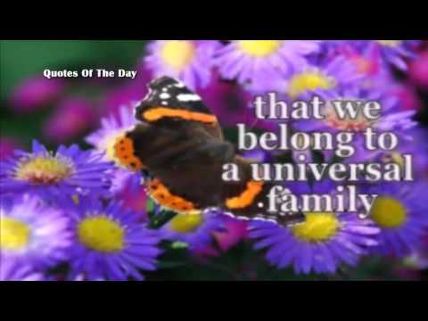 mp4 Motivational Quote For Unity, download Motivational Quote For Unity video klip Motivational Quote For Unity
