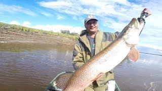 Рыбалка на иртыше в тугалово 2020