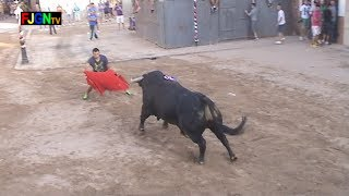 preview picture of video 'Toro Fiestas en Mascarell 27/08/2013 (Nules - Castellon) Bous al Carrer [Toros FJGNtv]'