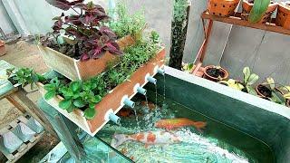 Aquarium raising Colorful Fish Simple But Beautiful