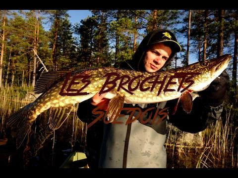 Les Brochets Suedois  [ BANDE ANNONCE] pêche en Suède