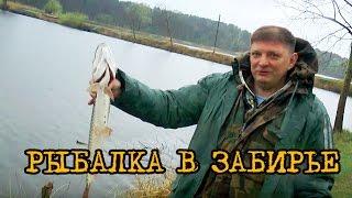 Рыбалка фиш парке