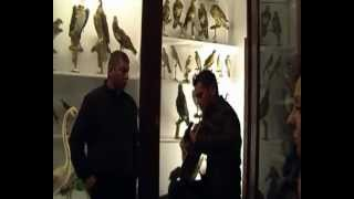 preview picture of video 'Tempiesina - tempio pausania museo (stazza)'