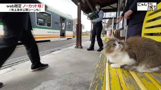 Vol.92「にゃん旅鉄道」わたしに任せてにゃ…!