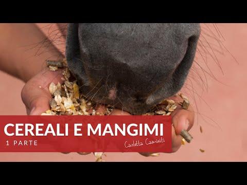 L'alimentazione 6 - Cereali e mangimi (2 parte)