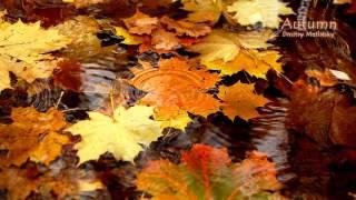 Дмитрий Метлицкий - Осень! Оркестровая музыка для души!