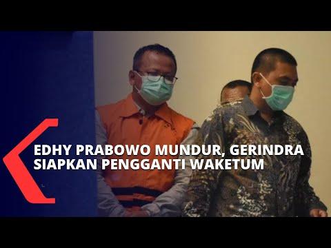 edhy prabowo mundur gerindra siapkan pengganti posisi wakil ketua umum