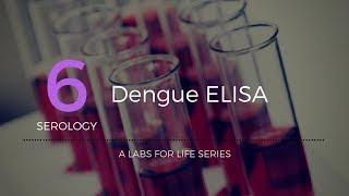 Dengue ELISA_
