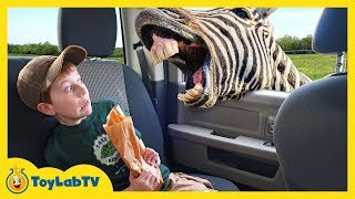 Animal Adventure Park Zoo With Animals For Kids, Dinosaur Fossil & Fun Outdoor Wildlife Activities