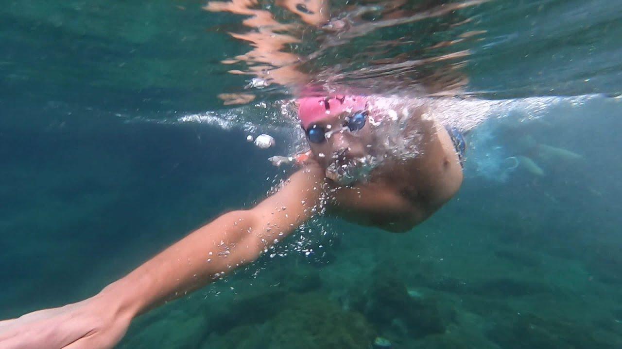 Défi de Monte Cristo : préparation des nageurs du CNM