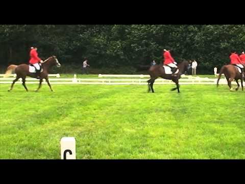 Saxe Gotha 4 tal CDE klasse L afdelingsdressuur 28-5-2011