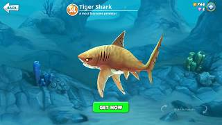 hungry shark world, tiger shark (3D Motion)